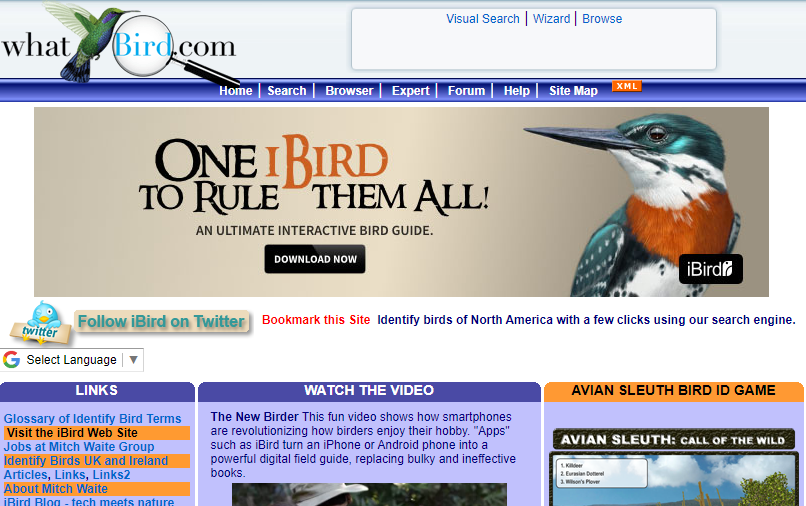 What Bird – Helping you identify the birds you see and hear!