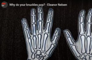 Why do Your Knuckles Pop TED ED